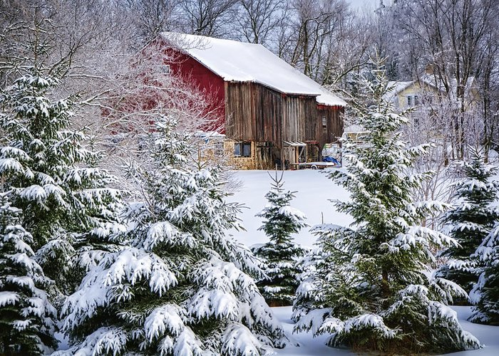 Evergreen Greeting Card featuring the photograph Another Wintry Barn by Joan Carroll