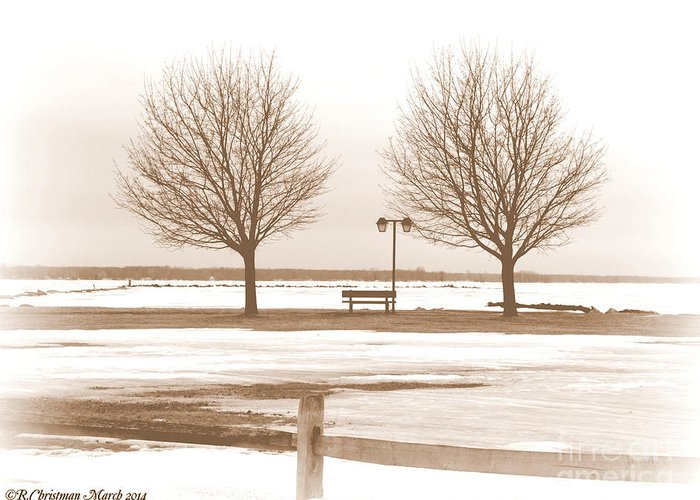 Winter Greeting Card featuring the photograph Anticipating Spring by Rennae Christman