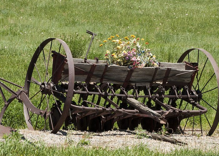 Old Farm Equipment Greeting Card featuring the photograph Antique Horse Drawn Seeder by Daniel Hebard