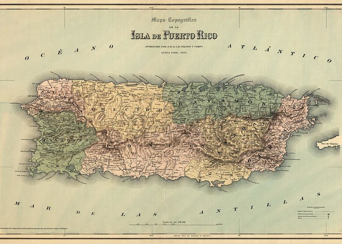 Art Of Puerto Rico Greeting Cards