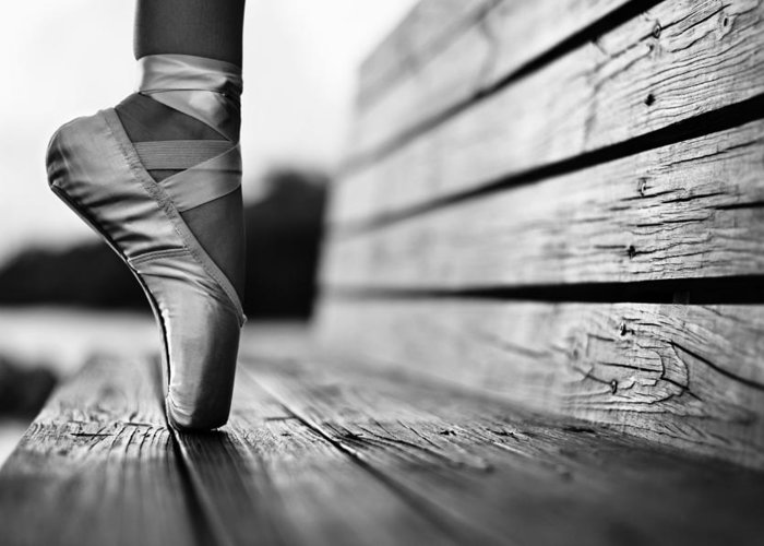 Pointe Shoes Greeting Card featuring the photograph Aplomb by Laura Fasulo