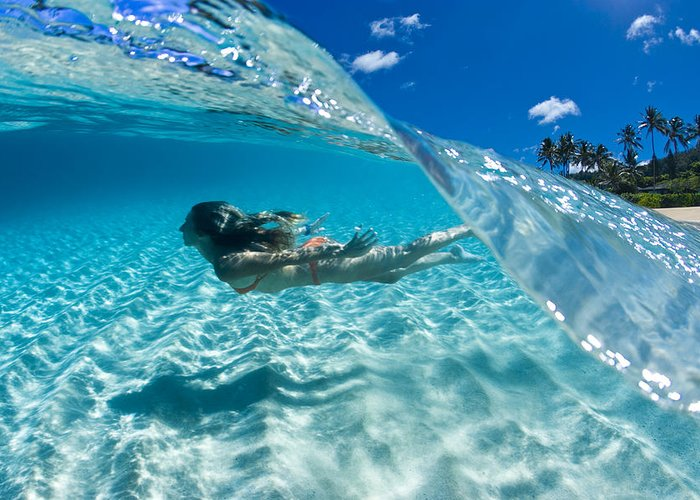 Hawaii Underwater Greeting Card featuring the photograph Aqua Dive by Sean Davey