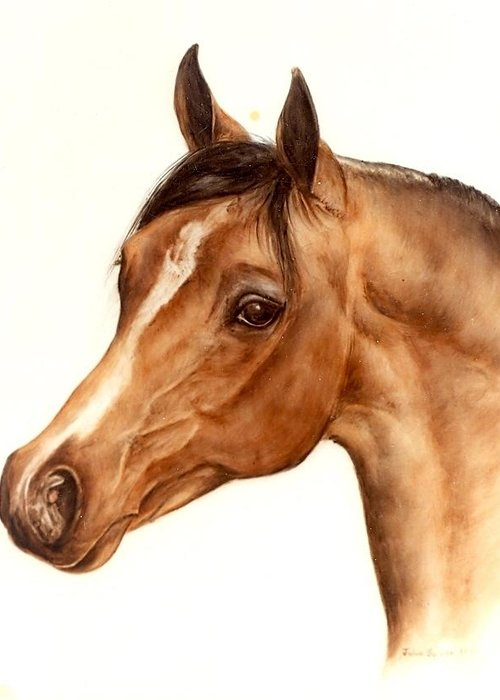 Horse Greeting Card featuring the painting Arabian Horse Head Study by Julia Sweda