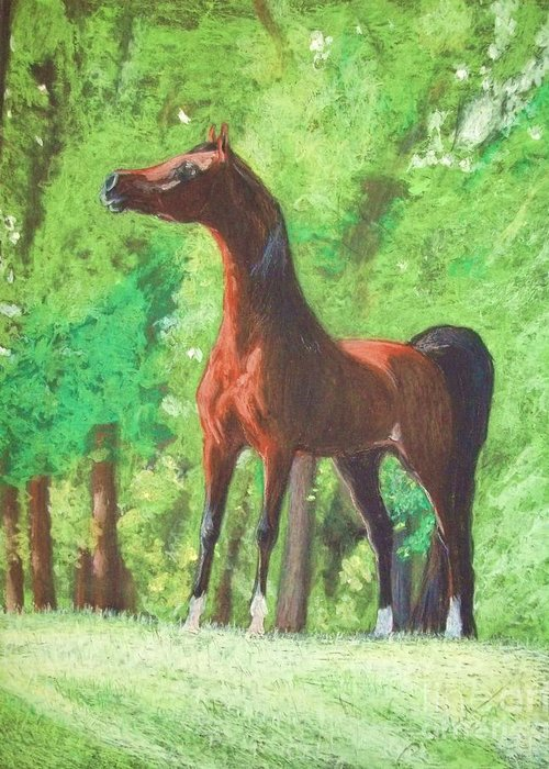 Horse Paintings Greeting Card featuring the painting Arabian Horse In A Forest Clearing by Dorota Zdunska