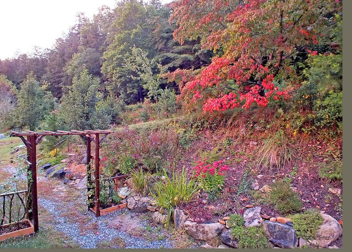 Duane Mccullough Greeting Card featuring the photograph Arbor And Fall Colors by Duane McCullough