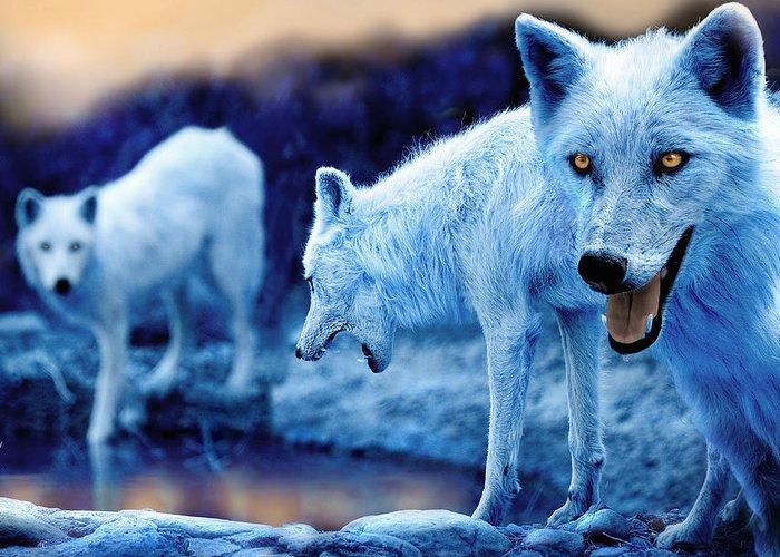 Arctic Wolf Stationery