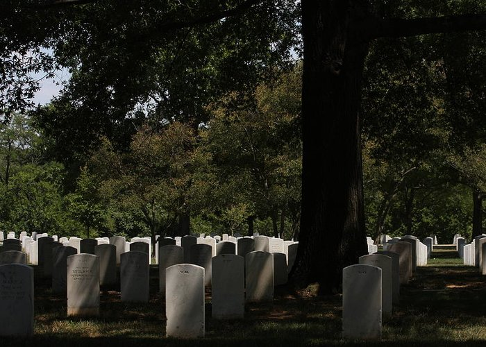 Arlington Greeting Card featuring the photograph Arlington National Cemetery - 121243 by DC Photographer