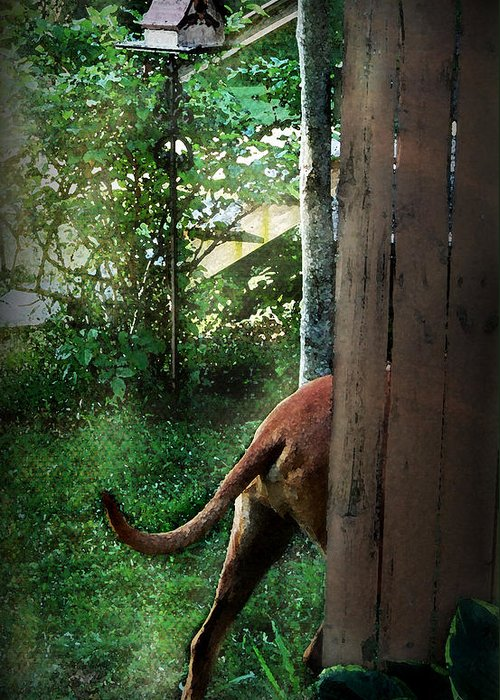 Eli Greeting Card featuring the photograph Around The Bend by Mim White