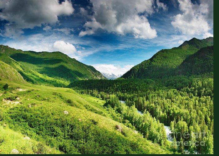 Art Beautiful Greeting Card featuring the photograph Art Beautiful Greens Landscape by Boon Mee