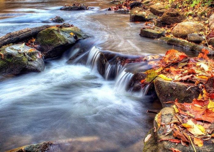 Fall Greeting Card featuring the photograph Art For Crohn's Hdr Fall Creek by Tim Buisman