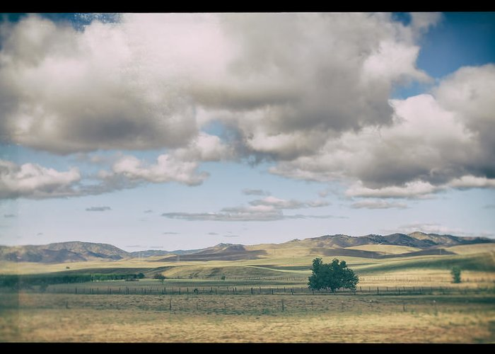 Open Land Greeting Cards
