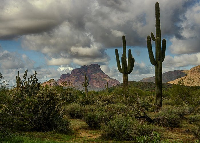 Arizona Greeting Card featuring the photograph As The Clouds Pass By by Saija Lehtonen