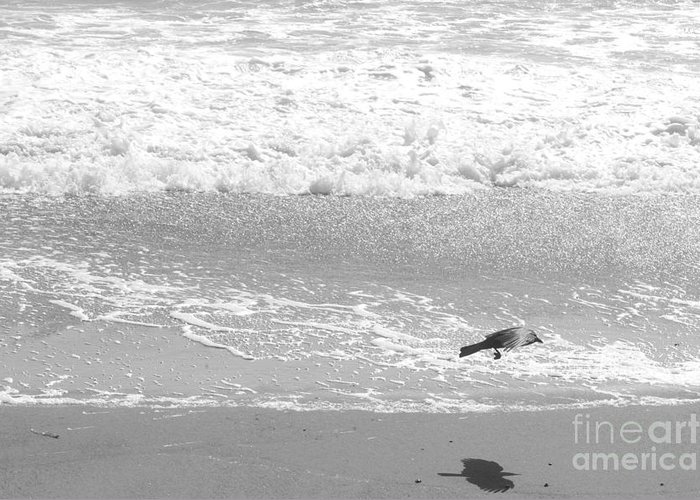 Beach Greeting Card featuring the photograph As The Crow Flies by Artist and Photographer Laura Wrede