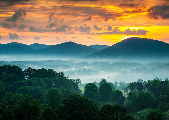 Pisgah National Forest Greeting Cards
