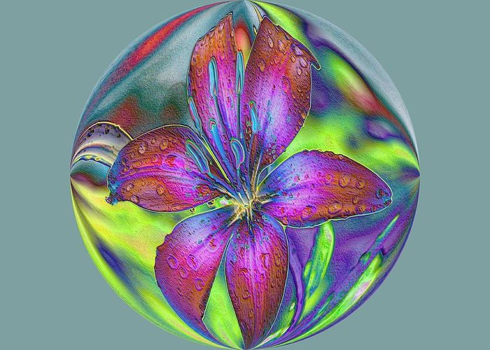 Greeting Card featuring the photograph Asiatic Lily by G Berry