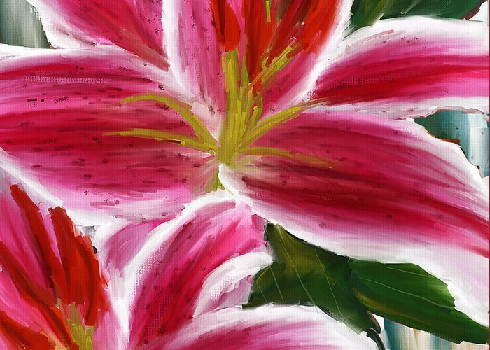 Asiatic Lily Greeting Cards