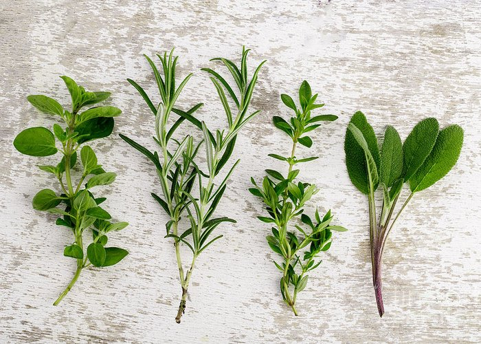 Rosemary Greeting Card featuring the photograph Assorted Fresh Herbs by Nailia Schwarz
