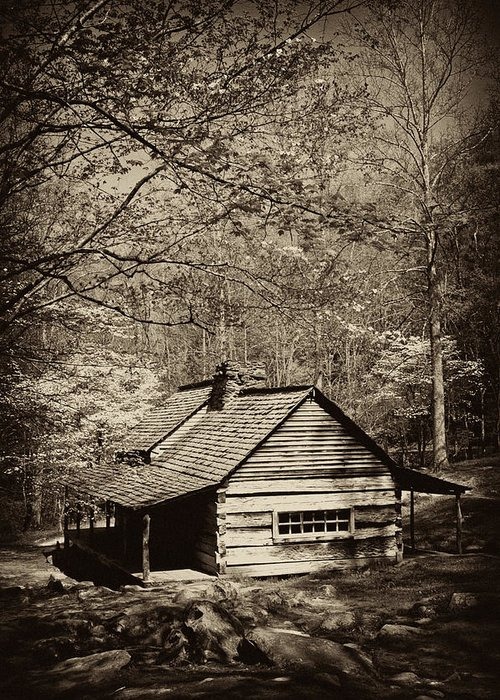 Appalachians Greeting Card featuring the photograph At Home In The Appalachian Mountains by Paul W Faust - Impressions of Light