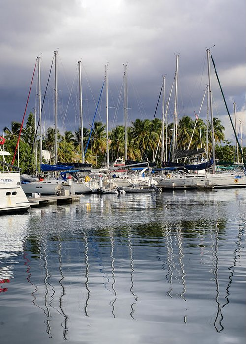 Sail Greeting Card featuring the photograph At The Marina by  Michael Glenn