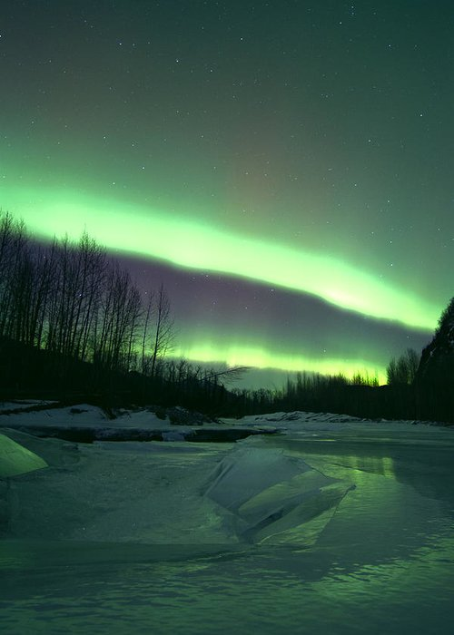 Alaska Greeting Card featuring the photograph Aurora Over Ice by Phil Courtney