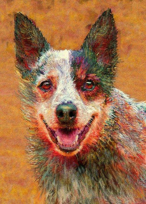 Australian Cattle Dog Greeting Card featuring the digital art Australian Cattle Dog by Jane Schnetlage