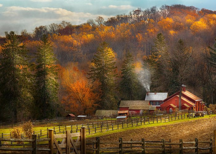 Happy Little Trees Greeting Card featuring the photograph Autumn - Barn - The End Of A Season by Mike Savad