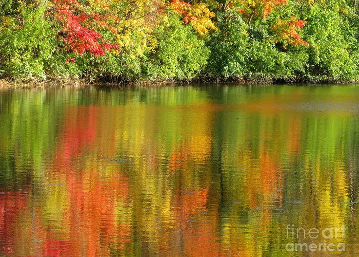 Autumn Greeting Card featuring the photograph Autumn Brilliance by Ann Horn