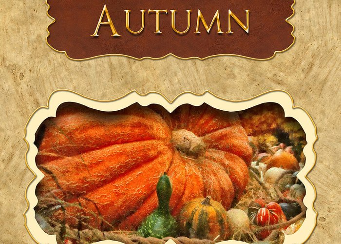 Autumn Greeting Card featuring the photograph Autumn Button by Mike Savad