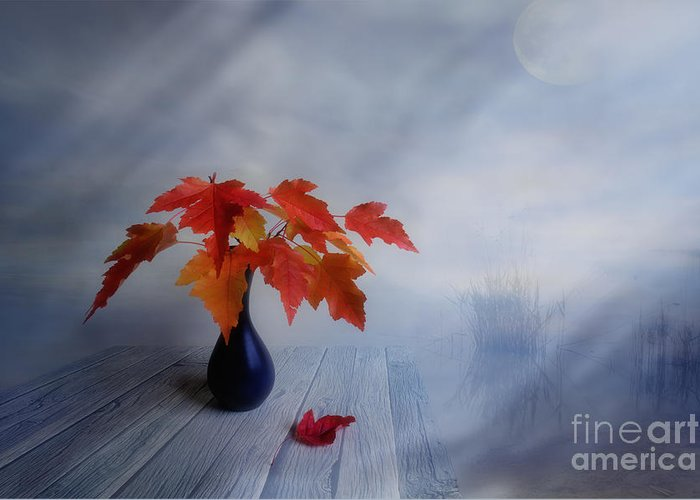 Art Greeting Card featuring the photograph Autumn Colors by Veikko Suikkanen