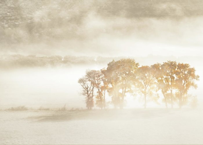 Designs Similar to Autumn Dreams by John Fan