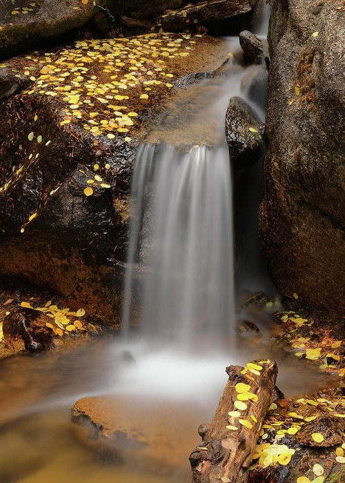 Aspens Greeting Card featuring the photograph Autumn Gold And Waterfall by Leland D Howard