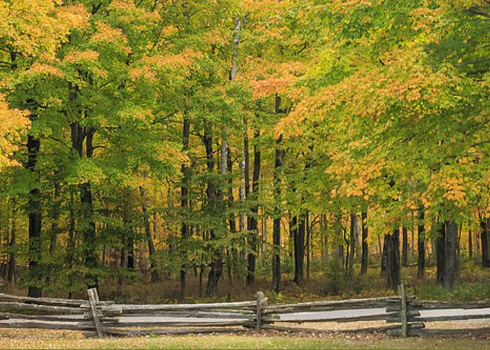 3scape Photos Greeting Card featuring the photograph Autumn In Door County by Adam Romanowicz