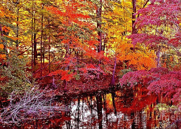 Autumn Greeting Card featuring the photograph Autumn Is Too Hot by Rita Brown