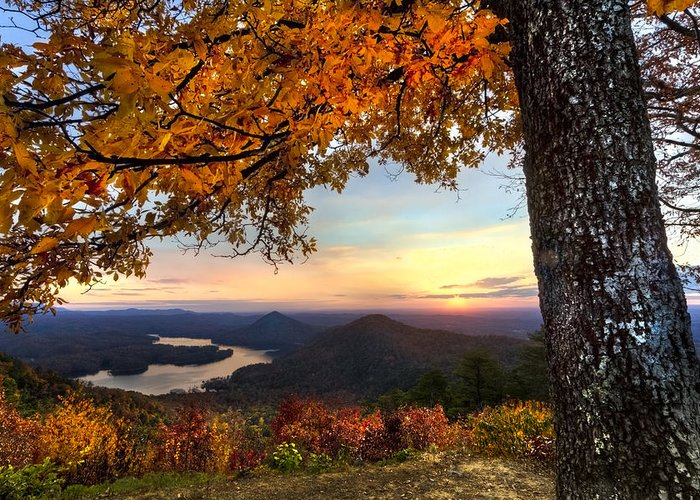 Appalachia Greeting Card featuring the photograph Autumn Lake by Debra and Dave Vanderlaan