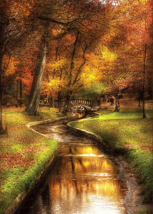 Savad Greeting Card featuring the photograph Autumn - Landscape - By A Little Bridge by Mike Savad