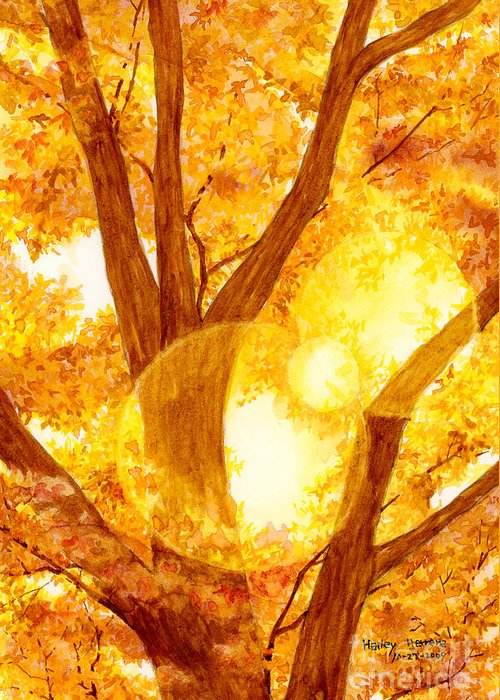 Tree Greeting Card featuring the painting Autumn Light by Hailey E Herrera