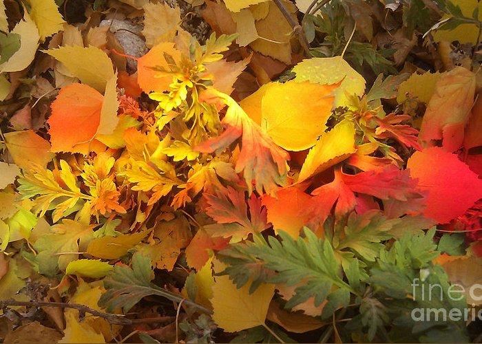 Autumn Masquerade Greeting Card featuring the photograph Autumn Masquerade by Martin Howard