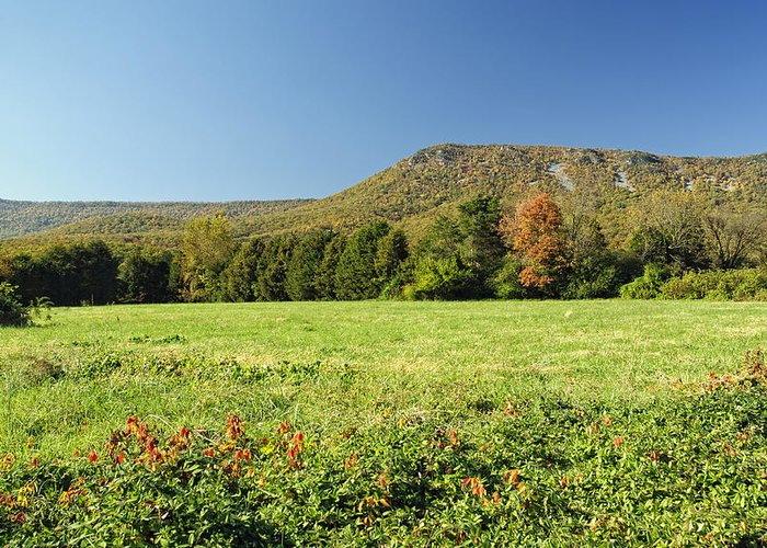 Mountain Greeting Card featuring the photograph Autumn Massanutten by Lara Ellis