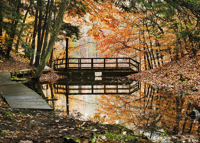 Fall Greeting Card featuring the photograph Autumn Pleasure by Christina Rollo