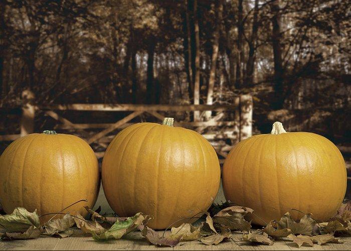 Pumpkins Greeting Card featuring the photograph Autumn Pumpkins by Amanda Elwell