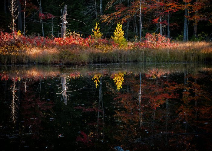 Nh Greeting Card featuring the photograph Autumn Reflections - Red Eagle Pond by Thomas Schoeller