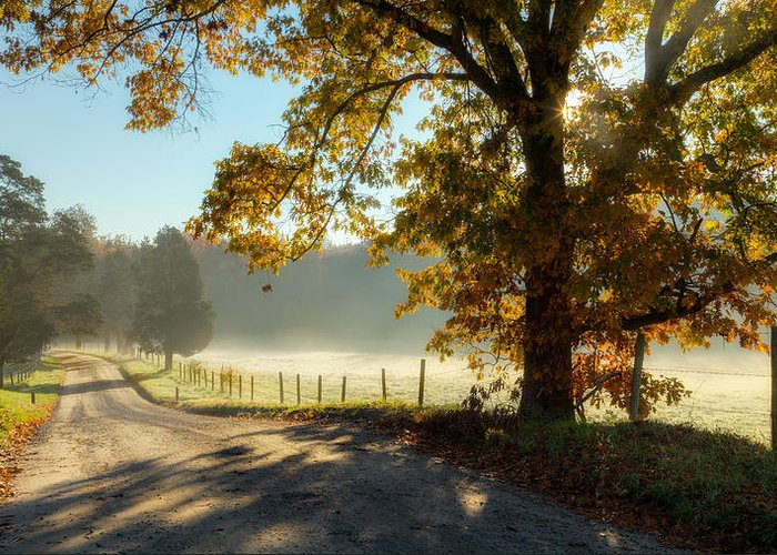 Fog Greeting Card featuring the photograph Autumn Road by Bill Wakeley