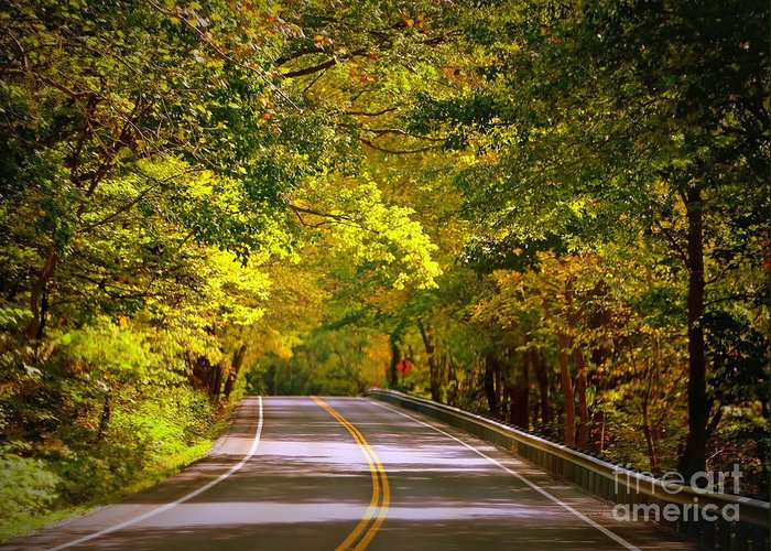Autumn Road Greeting Card featuring the photograph Autumn Road by Carol Groenen