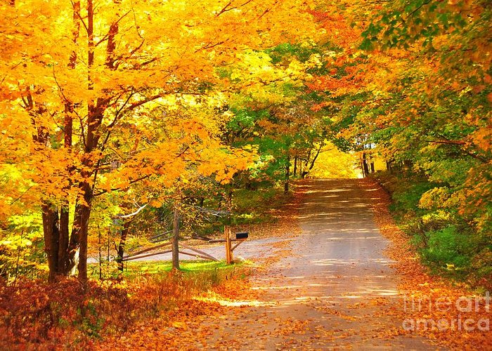 Autumn Greeting Card featuring the photograph Autumn Road Home by Terri Gostola