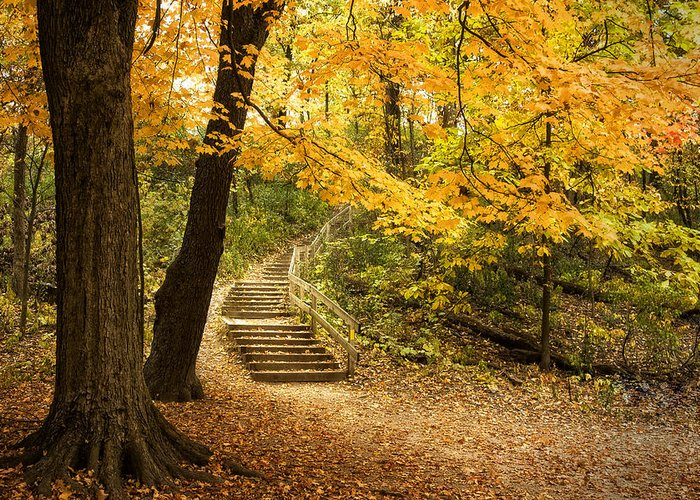 Autumn Greeting Card featuring the photograph Autumn Stairs by Scott Norris