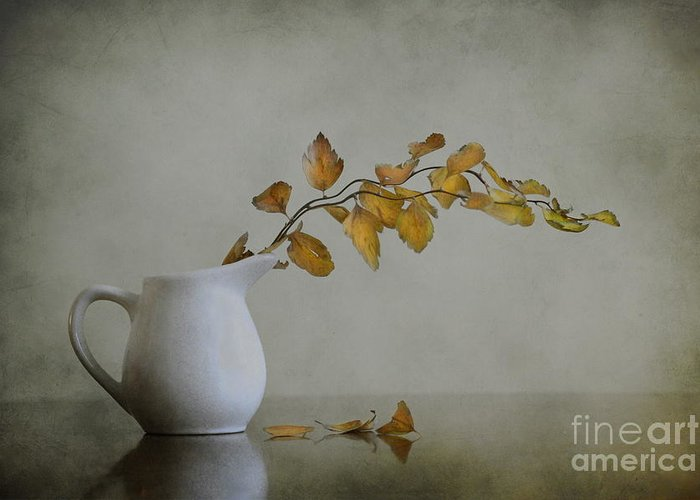 Still Life Greeting Card featuring the photograph Autumn Still Life by Diana Kraleva