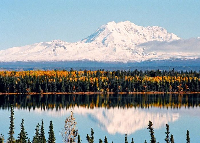 Alaska Greeting Card featuring the photograph Autumn View Of Mt. Drum - Alaska by Juergen Weiss