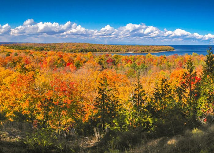 Door County Greeting Card featuring the photograph Autumn Vistas of Nicolet Bay by Ever-Curious Photography
