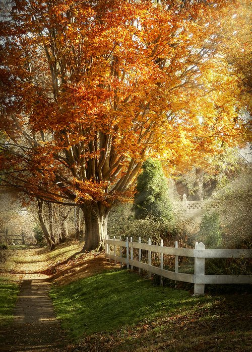 Autumn Greeting Card featuring the photograph Autumn - Westfield Nj - I Love Autumn by Mike Savad