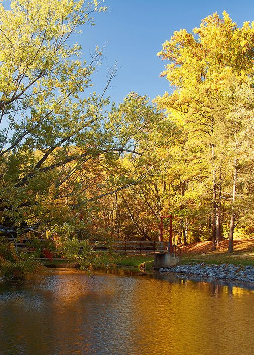 Autumn Greeting Card featuring the photograph Autumn's Golden Pond by Kim Hojnacki
